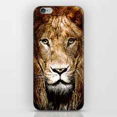 Fiercely Captivating  iPhone & iPod Skin