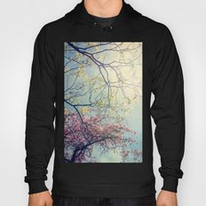 The Song of a Spring Sky Hoody