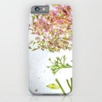 iPhone & iPod Case featuring Botanical Blueprints by Mina Teslaru