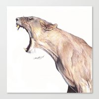Lioness Yawning Canvas Print