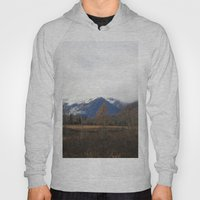 Turnagain Pass Hoody