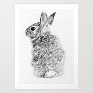 Art Print featuring Rabbit by Anna Shell