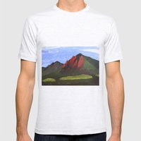 Flatirons Mens Fitted Tee Ash Grey SMALL