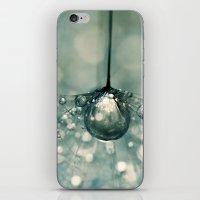 Sea Grey Drop iPhone & iPod Skin