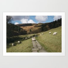 Stone footpath and grazing sheep. Edale, Derbyshire, UK. Art Print
