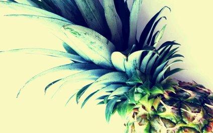 Art Print - Tall pineapple - Yilan