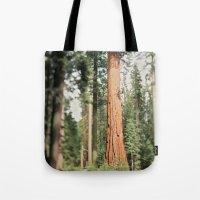 Giant Sequoia Tote Bag