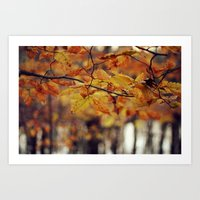 Changing Seasons Art Print
