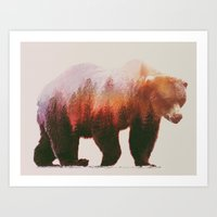 bear Art Prints featuring Brown Bear by Andreas Lie