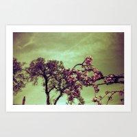 Redscale Blossom Art Print
