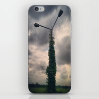 Light Post iPhone & iPod Skin