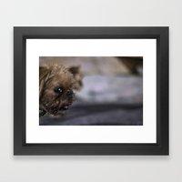 Grampa The Dog Framed Art Print