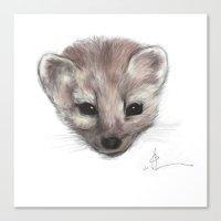 Pine Marten Canvas Print