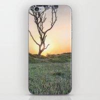 Barrier Island Sunrise II iPhone & iPod Skin