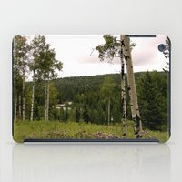 Spring in WaterValley iPad Case