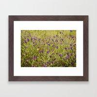 Little flowers in a field Framed Art Print
