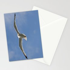 Seagull patrol  Stationery Cards
