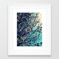 Pops Framed Art Print