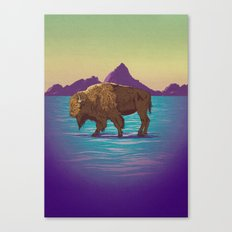 Buffalo Country Canvas Print