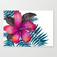 Pink Hibiscus Flower - WHITE Canvas Print