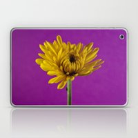 Grape And Lemon Laptop & iPad Skin