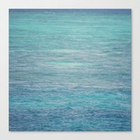 South Pacific X The Cora… Canvas Print