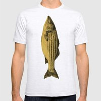 A Fish Mens Fitted Tee Ash Grey SMALL