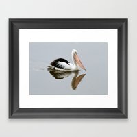 A Pelican Reflecting Framed Art Print