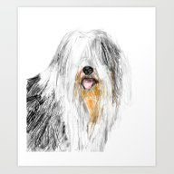 Old English Sheepdog Art Print