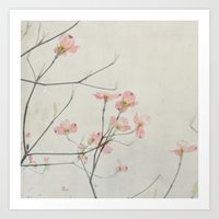 Pink Dogwood Flower Bota… Art Print