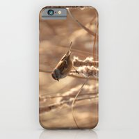 A Sparrow on Catails iPhone 6 Slim Case