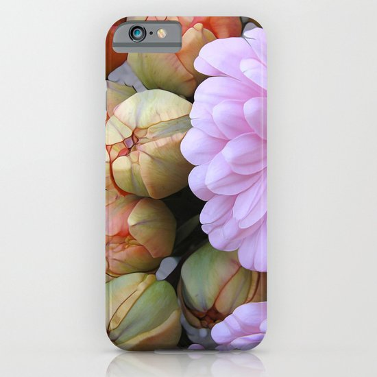 Daisy Loves Tulips iPhone & iPod Case