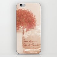 Sweet Pink By The Window iPhone & iPod Skin