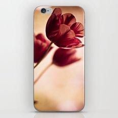 blown in the wind iPhone & iPod Skin