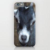 Addison iPhone 6 Slim Case