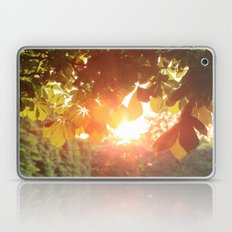 Magic Hour Laptop & iPad Skin
