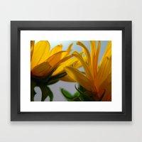 Sun 2 Framed Art Print