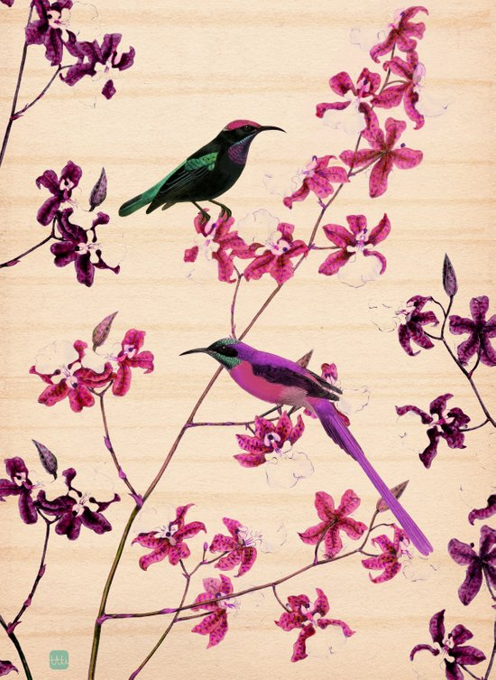 Birds and orchids Art Print