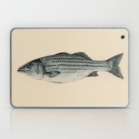 A Fish Laptop & iPad Skin