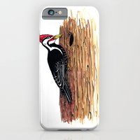 Pileated Woodpecker iPhone 6 Slim Case