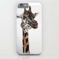 iPhone & iPod Case featuring Giraffa camelopardalis by Condor