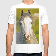 Welsh Pony  SMALL Mens Fitted Tee White