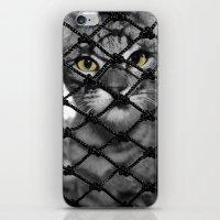 Tiger Inside iPhone & iPod Skin