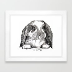 Bunny Framed Art Print