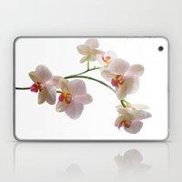 Orchid Spray Laptop & iPad Skin