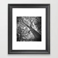 Tree II Framed Art Print