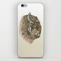 Buffalo Portrait iPhone & iPod Skin