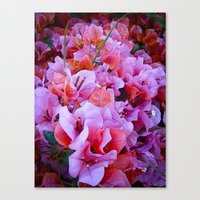 Scented Hill Canvas Print