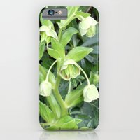 iPhone & iPod Case featuring Lily of the Valley by ArtistsWorks