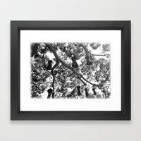 Hanging Garden Framed Art Print
